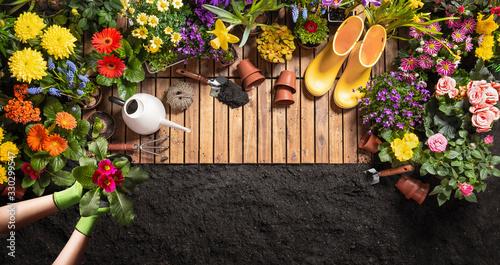 Tablou Canvas Gardening Tools on Soil Background. Spring Garden Works Concept