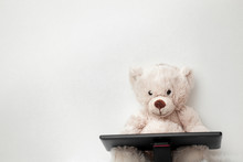 Teddy Bear With A Digital Tabl...