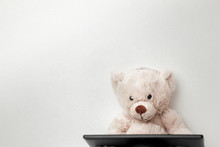 Teddy Bear With A Digital Tabl...