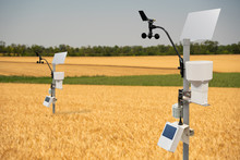 Weather Station In A Wheat Fie...
