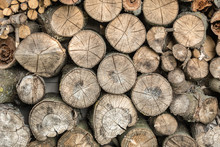 Pile Of Dry Round Firewood For...