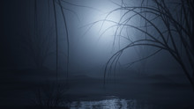 Dark And Foggy Forest Swamp 3d...