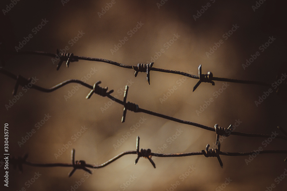 Fototapeta Old rusty barbed wire fence at a military facility