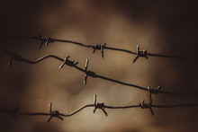 Old Rusty Barbed Wire Fence At...