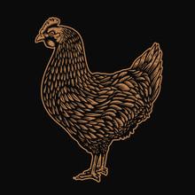 Illustration Of Chicken In Engraving Style. Design Element For Logo, Label, Sign, Emblem, Poster. Vector Illustration