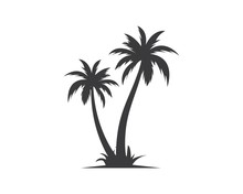 Palm Tree Icon Of Summer And Travel Logo Vector Illustration