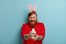 Positive Bearded Red Haired Man Gives You Small White Fluffy Bunny, Has Happy Festive Mood Before Holiday, Prepares For Easter, Wears Red Jumper And Rabbit Ears, Isolated On Blue Background.