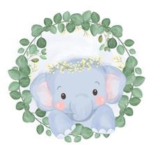 Cute Baby Elephant Illustration, Animal Clipart, Baby Shower Decoration, Woodland Illustration.