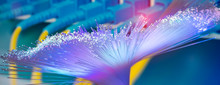 Fiber Optics Network Cable For Fast Communications