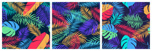 Set Of Seamless Patterns With Exotic Colorful Leaves Of Monstera, Banana Tree And Palm Branches, Bright Trendy Vector Tropical Backgrounds