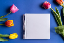 Spring Tulip Flowers And Noteb...