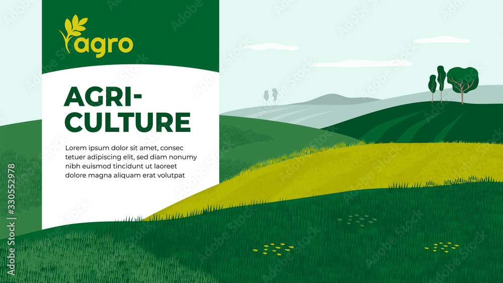 Fototapeta Vector illustration of landscape with agricultural fields. Design for farming company with crops, farm, cultivated land. Template with agriculture for banner, layout, flyer, booklet, brochure, web, ad