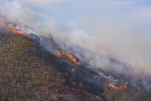 Dramatic Wildfire With Gale Fo...