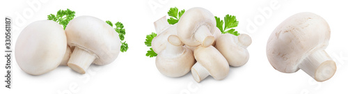Fotografia Fresh mushrooms champignon isolated on white background with clipping path and full depth of field