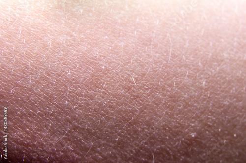 Fototapeta Human skin close-up. Skin relief, hair. Texture. Background. obraz na płótnie