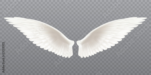 White realistic wings Tablou Canvas