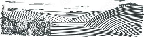 Fototapeta Piękny widok wiejsci z polami i łakami rysunek odreczny wektorowy obraz