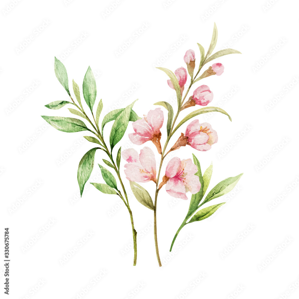 Fototapeta Watercolor vector bouquet of pink flowers and almond leaves.