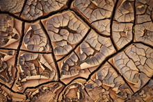 Dried Cracked Earth Soil Ground Texture Background. Mosaic Pattern Of Sunny Dried Earth Soil
