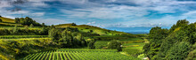 "GERMANY. The ""Kaiserstuhl""  In..."