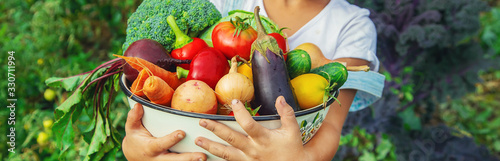 Fototapeta owoce   child-in-the-garden-with-vegetables-in-his-hands-selective-focus