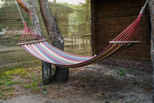 Hanging Empty Hammock Between ...