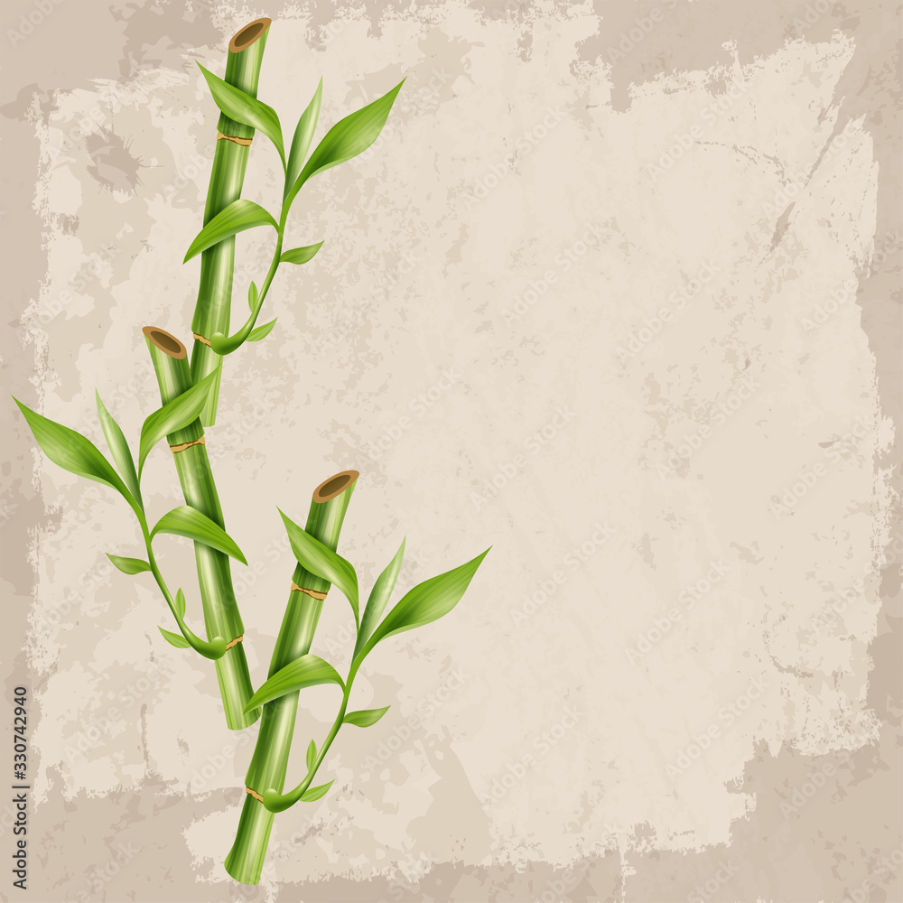 Vector green bamboo stems and leaves with empty space for your wishes.