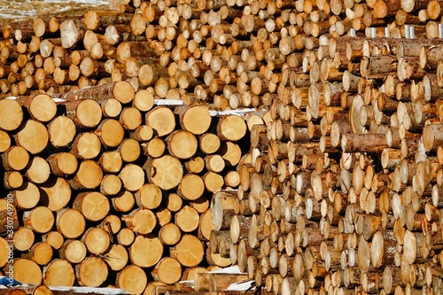 pile of wood, photo as a background Wallpaper Mural