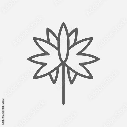Photo Aster icon line symbol