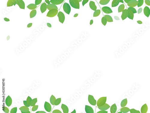 新緑のイラスト フレームメッセージカード Fotobehang