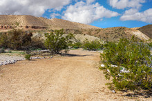 Hiking Trail In The Lake Mead National Recreation Area Near Laughlin, Nevada