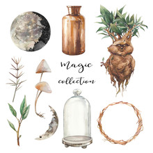 Magic Collection. Decorative Objects Isolated On White Background. Mandrake, Glass Dome, Bottle, Moon Phases, Plants, Mushrooms.
