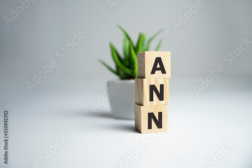 The word ANN Artificial Neural Network on wooden cubes Canvas Print