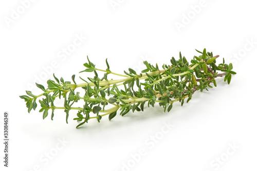 Fotomural Fresh thyme sprigs, spice, isolated on white background