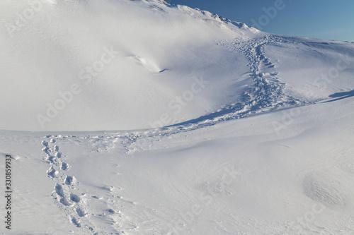 Fototapety, obrazy: Single line of footprints winding up a pristine, snowy hill