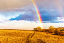 Rainbow Over Field And Meadow, Beautiful Rural Spring Scenery.  Picturesque Outdoor Landscape Of Rainbow During Sunny Weather After Rain.