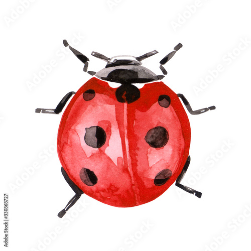 Photographie Watercolor illustration of ladybug in red ink with black spots