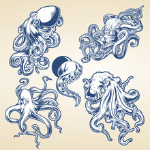Octopus Drawing Blue Vintage Vector Illustrtor