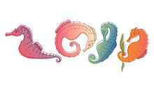 Stylized Sea Horses With Bony ...