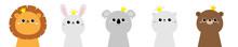 Lion Koala Bear Cat Bunny Rabb...