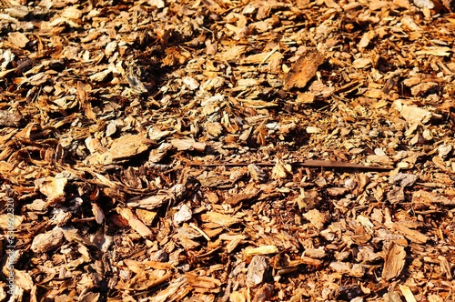 Closeup shot of brown leaves on the ground at daytime