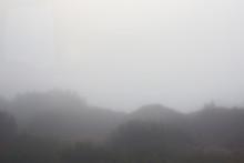 Autumn Weather. Dense Fog In T...