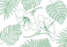 Hibiscus And Plant Line Drawin...