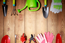 Gardening Tools, Seeds And Soi...