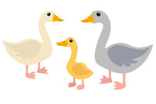 Cute Cartoon Goose Family In F...