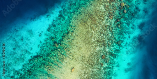 Panoramic view on the coral reef. Azure water background from top view. Summer seascape from air. Travel - image