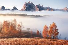Majestic Landscape With Autumn...