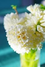 Bouquet Of Fragrant Cream Whit...