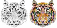 Zentangle Tiger Head. Hand Drawn Decorative Vector Illustration. Color And Outline Set