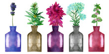 Watercolor Hand Painted Nature Herbal Floral Spa Composition With Multicolor Blue, Yellow, Purple, Grey And Pink Glass Bottles With Lavender, Hemp, Amaranth, Yarrow And Melissa Plants And Flowers